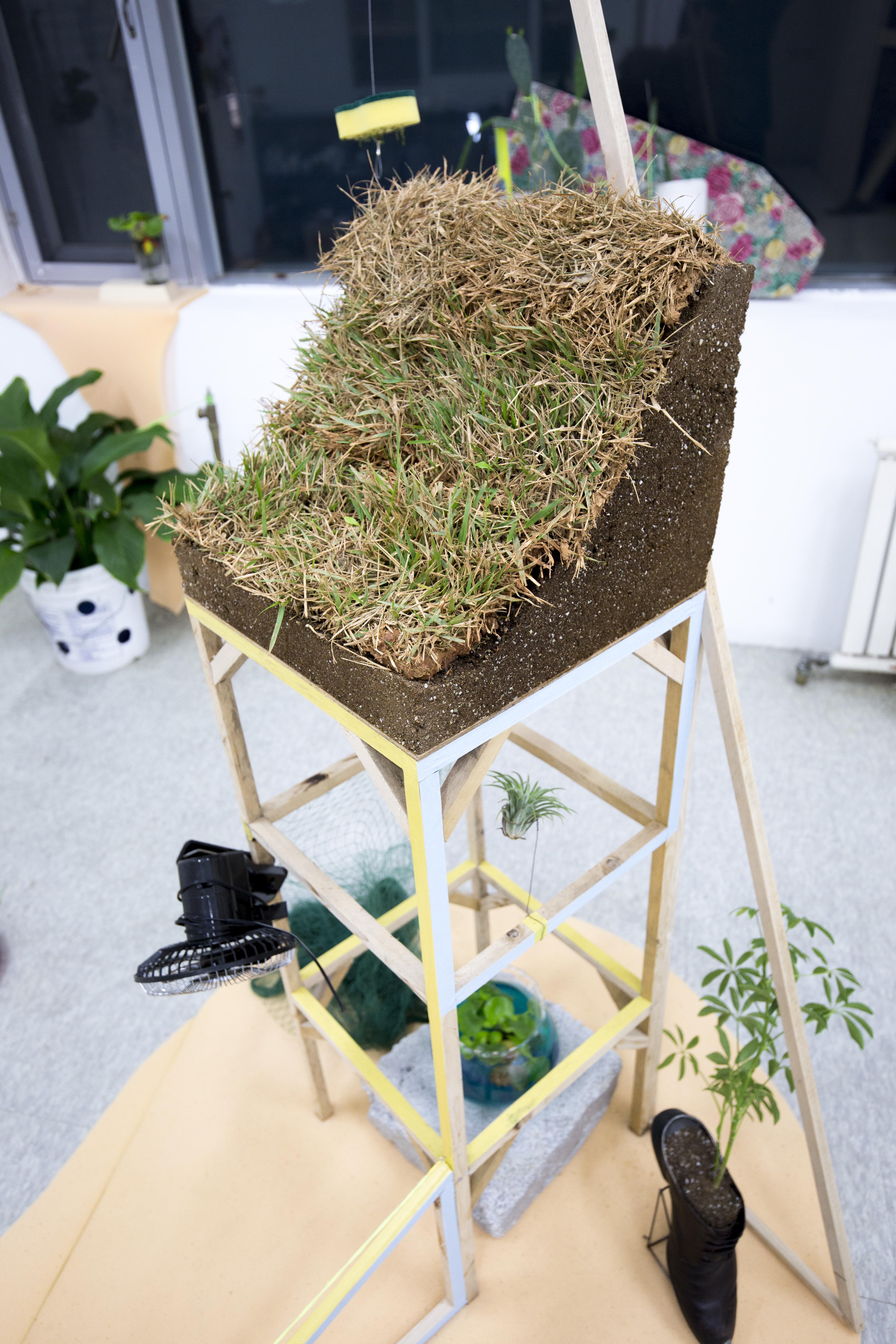 recycled gardening2