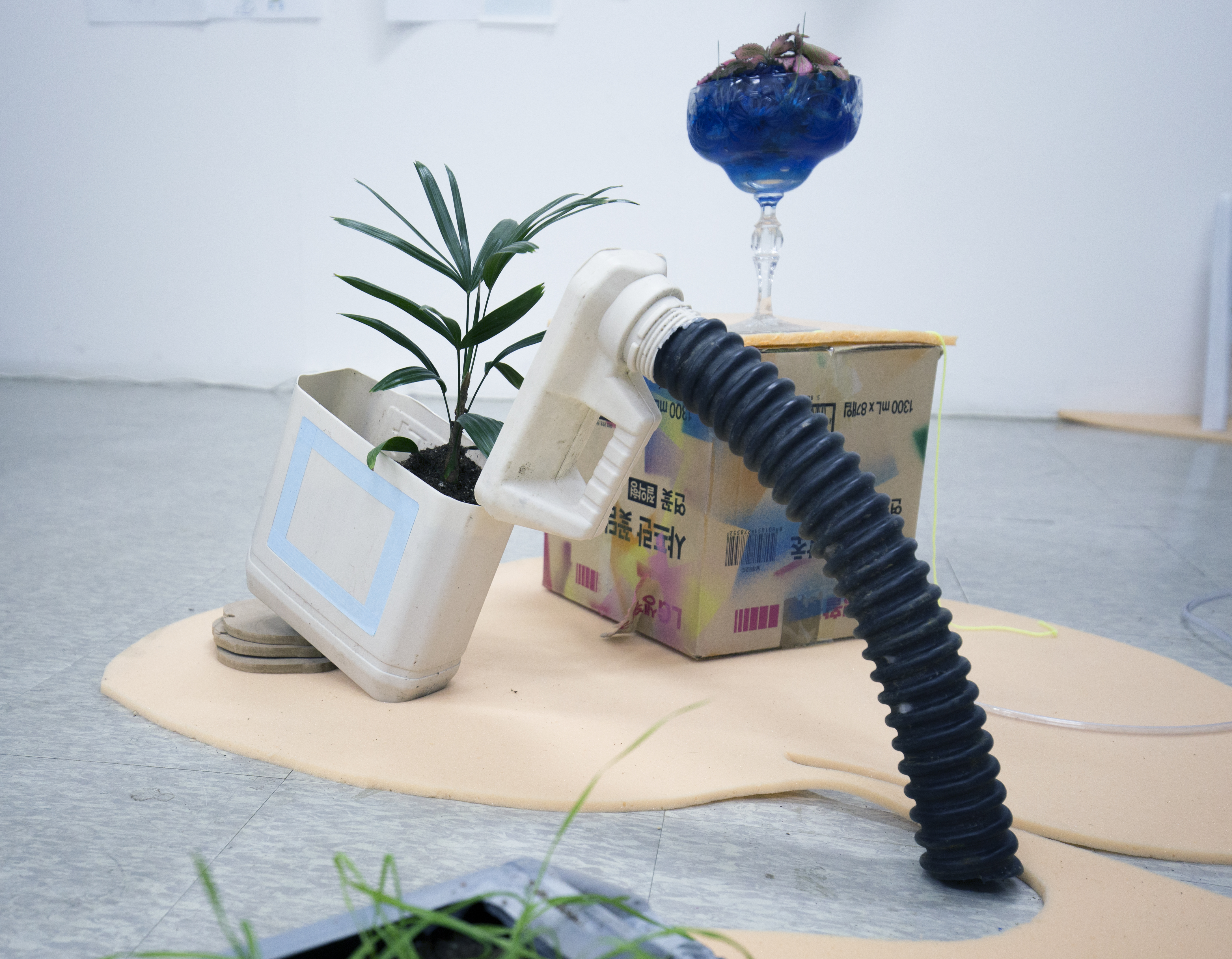 recycled gardening3